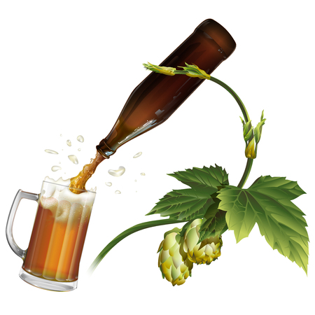 brewery: Beer is poured from the bottle into the mug. Branch of hops. Illustration