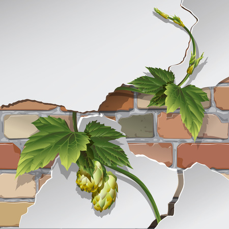 Old brick wall Vector illustration.