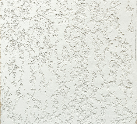 paperhanging: Decorative texture of the bark beetle is made of special putty Stock Photo