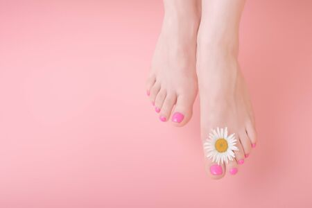 Closeup shot of female legs with clean and soft skin and chamomile flower decoration. pink background. Skincare concept