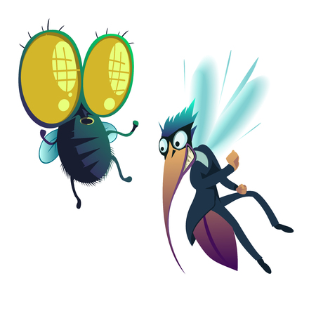 Vector illustration of a insect, fly and mosquito Illustration