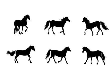 gallop: Vector illustration of a six horses silhouettes Illustration
