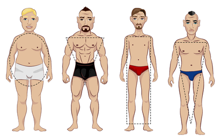 Vector illustration of a four types of male figure Stock Illustratie