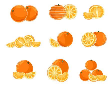 Vector illustration of nine different variants of oranges