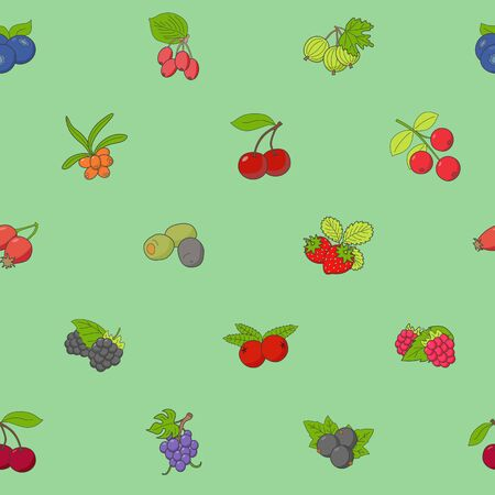 Berry background - Vector color seamless pattern of strawberry, raspberry, cherry, blueberry, cloud berry, dog rose and cranberry for graphic design