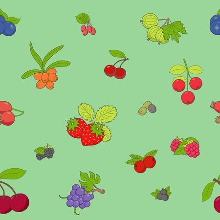 Berry background - Vector color seamless pattern of strawberry, raspberry, cherry, blueberry, cloudberry, dogrose and cranberry for graphic design