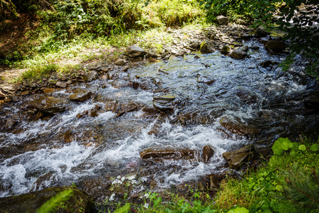 River Water Flowing Through Moss Covered Rocks