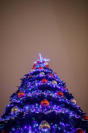 beautiful christmas tree in the city center at night