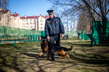 MINSK, BELARUS - 1 MARTH, 2019: a policeman trains a service dog