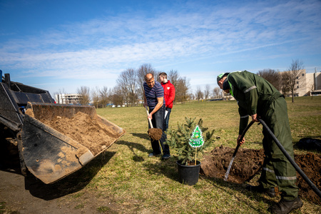 MINSK, BELARUS - 1 MARTH, 2019: friendly family plants a tree 写真素材 - 121918294