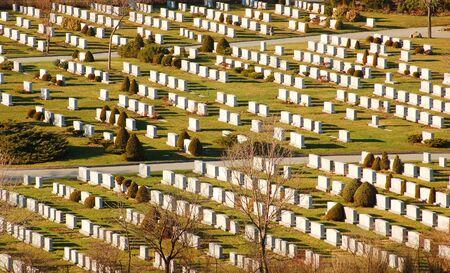 cementery in sun light Imagens