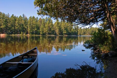 Lake and canoe after portage in sunny pine forest in Algonquin Park Imagens