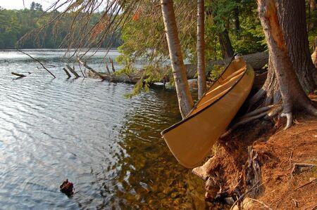 Algonquin Park에서 카누를 치는 날 밤에 맑은 밤