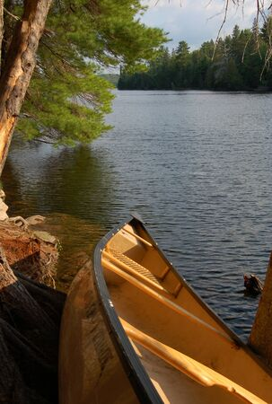 Sunny evening after day of canoeing in Algonquin Park