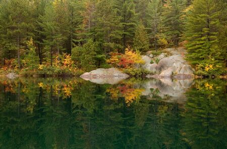 Reflection of colorful forest in lake surface in the overcast day Imagens