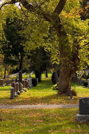 Autumn sunny day in the cemetery