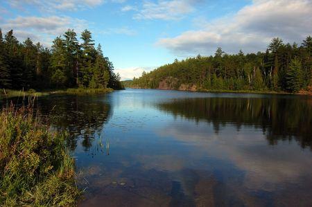 Algonquin Park의 맑은 소나무 숲에있는 호수