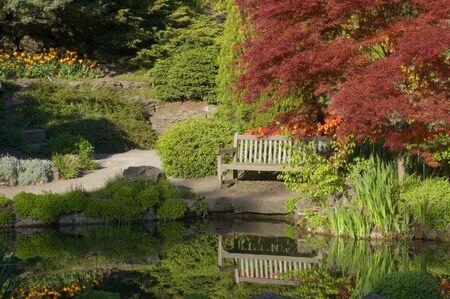 벤치 아래 나무 연못 해안에 나뭇잎