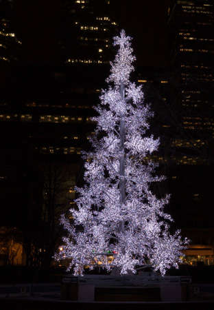 Christmas tree in a park on Toronto skyscraper background