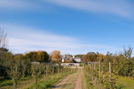 hause: Apple farm in fall time. Ontario Stock Photo