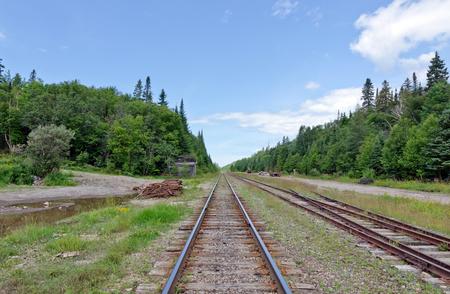 북부 온타리오, 캐나다의 농촌 현장에서 철도 트랙 스톡 콘텐츠