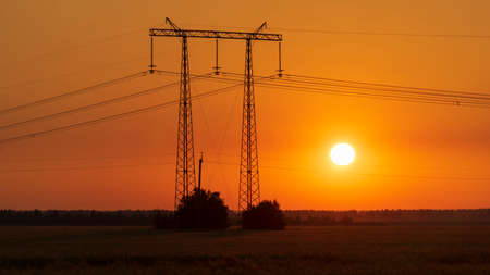 power lines at sunset in the field Zdjęcie Seryjne
