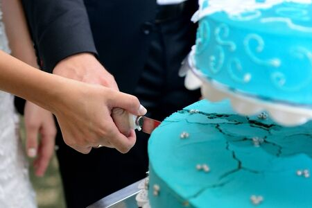 Groom and bride cutting the cake on wedding session