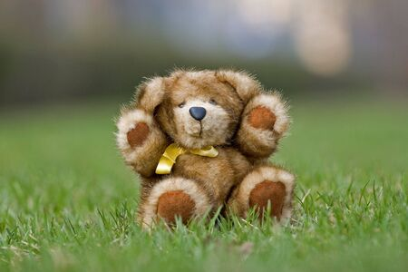 Teddy bear made by natural mink sitting on a grass