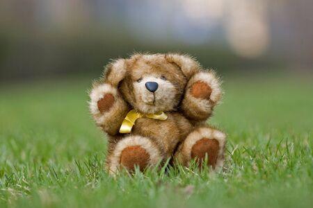 nerts: Teddy beer gemaakt door natuurlijke mink zittend op een gras Stockfoto