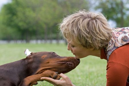 Friendship between human and animal - puppy give woman paw - handshake Stock Photo