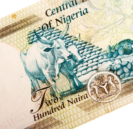 Nigerian banknotes photo