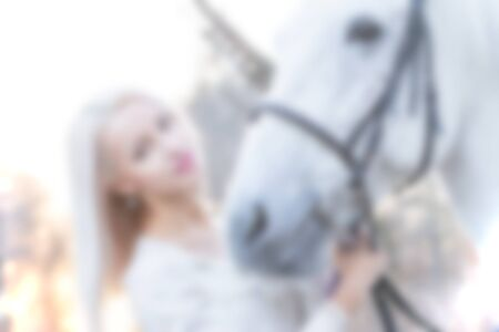 horse blonde: Blonde and white horse looking into each others eyes on sundown, creative abstract blur background with bokeh effect
