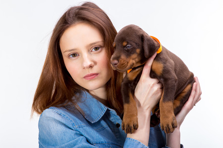 cute lady: Beautiful woman holds red doberman dog puppy on her hands, isolated on white