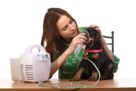 Young woman using nebulizer mask for respiratory inhaler dog Treatment isolated on a white background