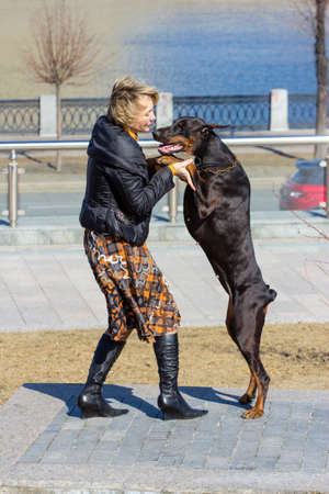 mujer perro: Pretty adult woman playing with her doberman female dog outdoors