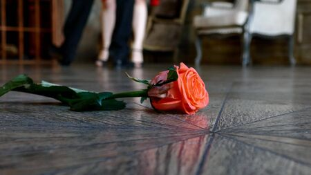 Red rose on the floor on dancing people background Banque d'images