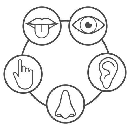 Ikona ludzkich zmysłów. Ilustracja wektorowa płaskie Ilustracje wektorowe