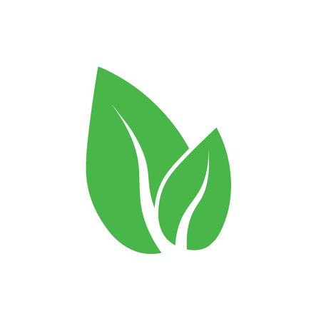 Green leaf, Eco icon vector