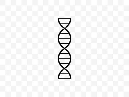 Chromosome, dna genetic icon Vector