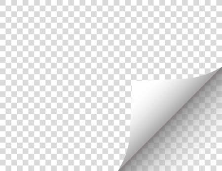 Paper with a curled edge. Vector illustration.