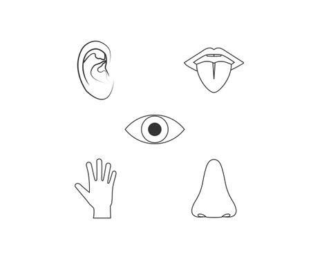 Human senses icon. Vector illustration, flat design.  イラスト・ベクター素材