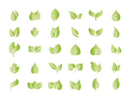 Vector illustration. Eco, green leaves icon set