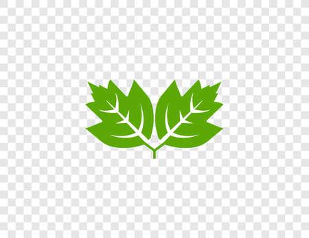 Green leaf, Eco icon on transparent background. Vector illustration.