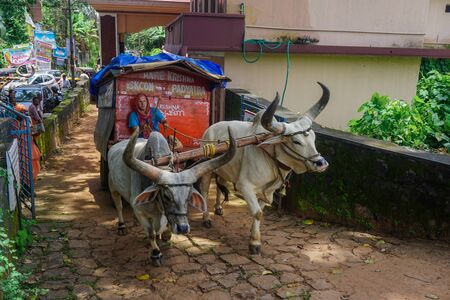 Kerala, India - August 2, 2017: Vaishnavas conduct missionary activities and travels around India. Every day they walk about 10 km, preach, sing songs and help people.