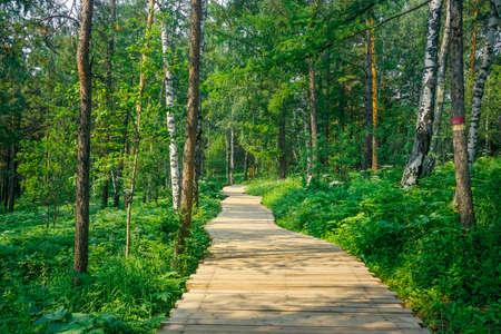 Hiking trail in the nature reserve Krasnoyarsk Pillars