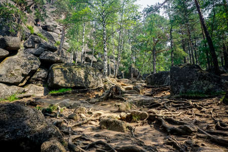 Krasnoyarsk Pillars Nature Reserve is one of the unique places in Russia
