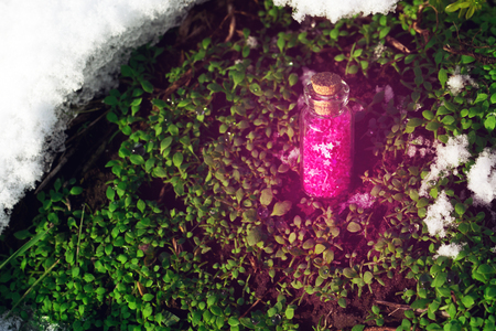 elixir: Flask with catched purple wishes over thaw moss Foto de archivo