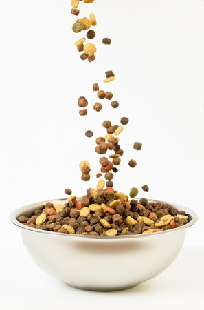 Pet food falls into the bowl for feeding.