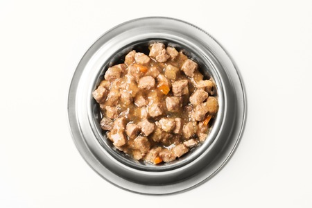 wet food for dogs and cats in silver bowl. Foto de archivo