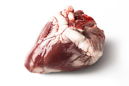 Raw sheep heart isolated on a white background. Stock Photo